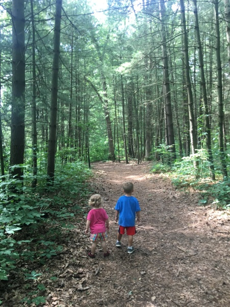 kids on a forest trail