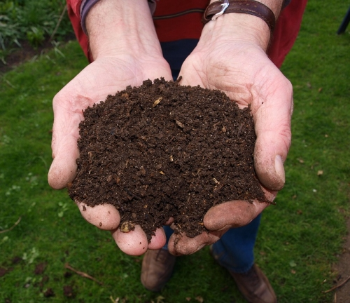 two hands full of rich dark compost